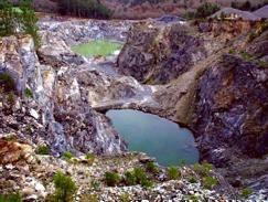 Resultado de imagen de imagen del medio ambiente en silleda
