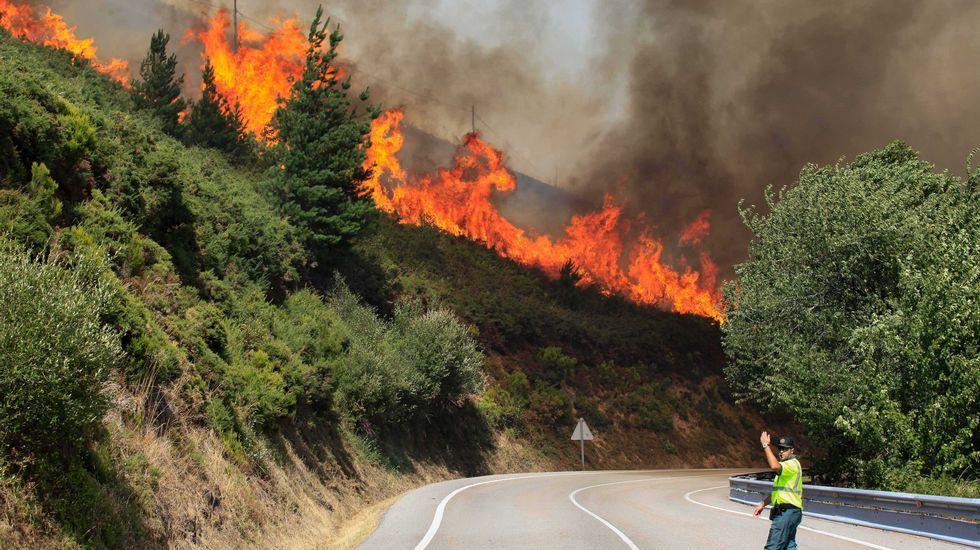 Resultado de imagen de incendios forestales galicia fotos