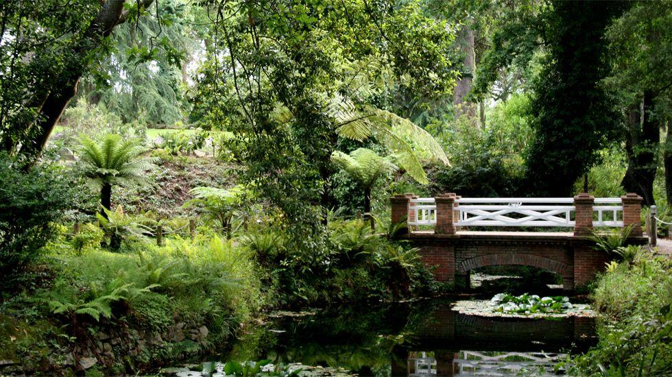 El Botanico De Par En Par En El Festejo De Su 16º Cumpleanos