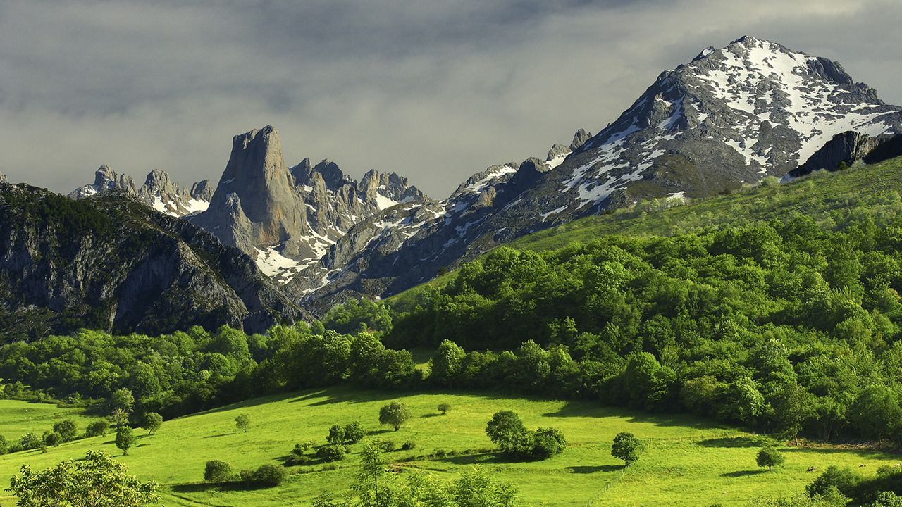 Un Emblema Asturiano De Altura
