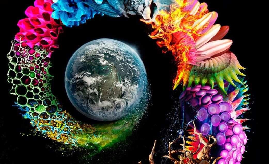 El milagro de la vida en la Tierra