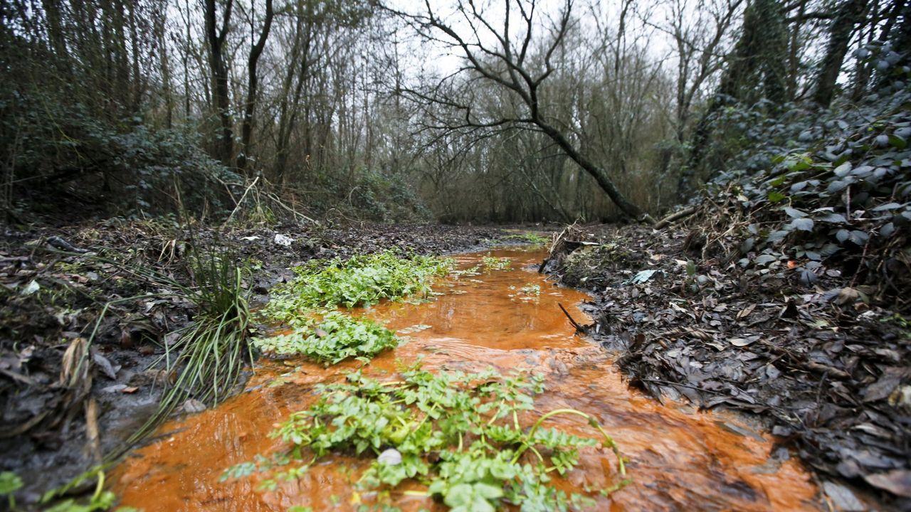 Resultado de imagen de rios contaminados vgalicia