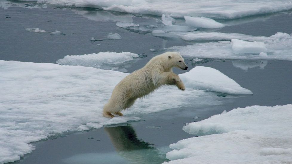 Alerta climática por deshielo en el Ártico