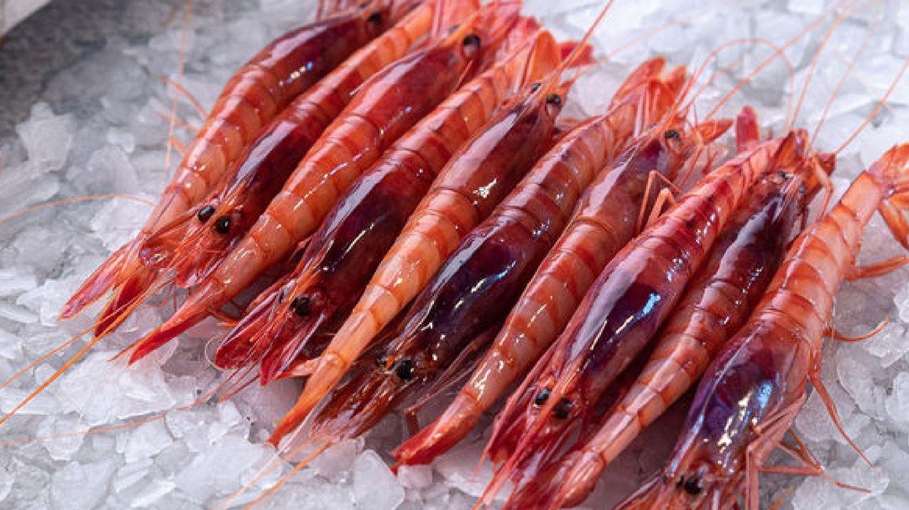 El sector pesquero de Almería se monta un «Red Friday» con descuentos en la  gamba roja