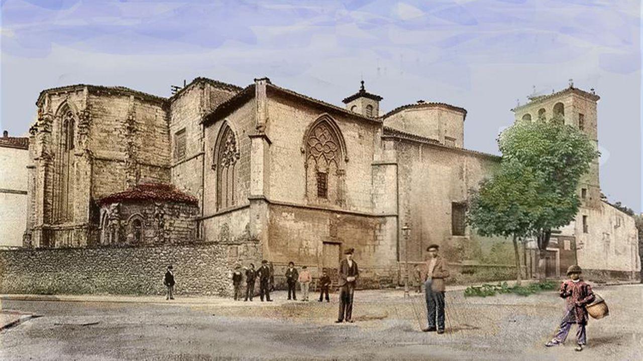 Un ejemplar de lobo.La plaza de la catedral de Oviedo