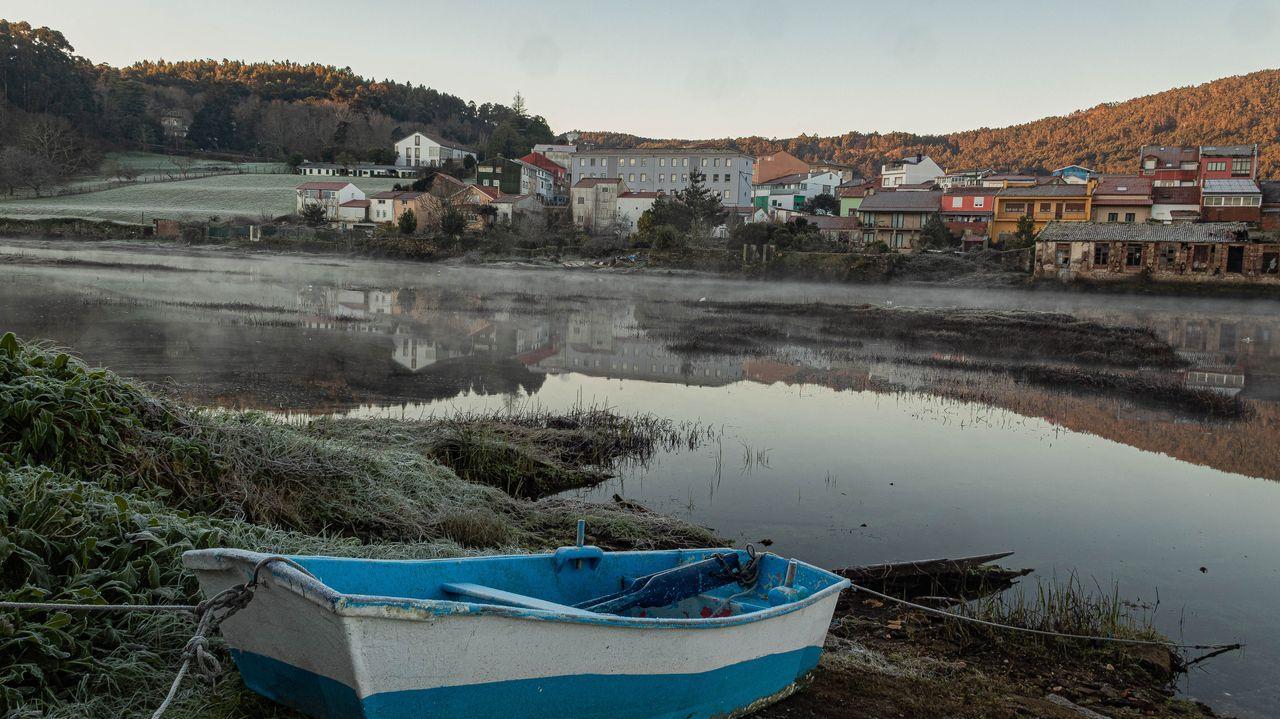 Carabelas portuguesas y crías de Velella Velella en la playa de Queiruga en Porto do Son.Campaña marisquera en Noia