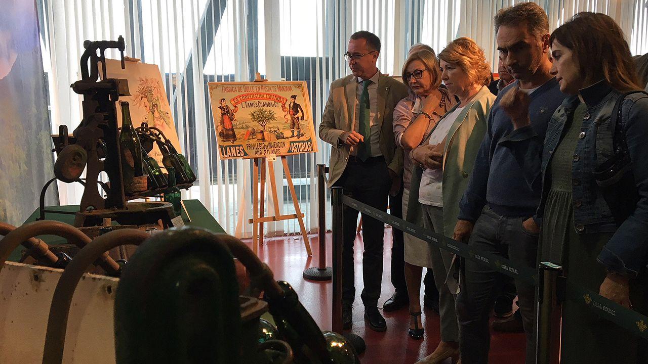 El consejero de Salud, Pablo Fernández Muñiz; la alcaldesa de Avilés, Mariví Monteserín, y el director general de Ganadería, Ibo Álvarez