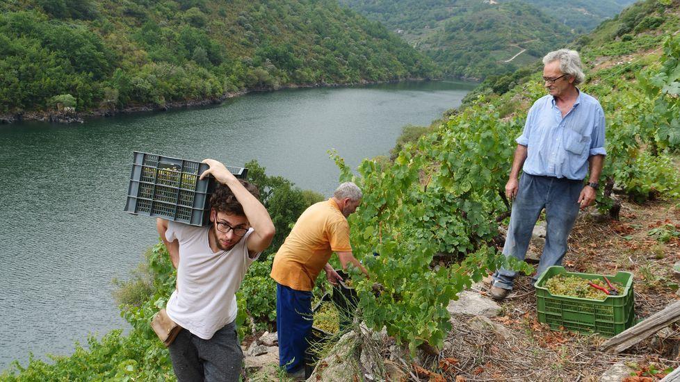 Las fotos de la ruta entre Samos y O Courel.Algunos de los trenes afectados tuvieron que esperar en la estación de San Clodio a que la avería fuese reparada