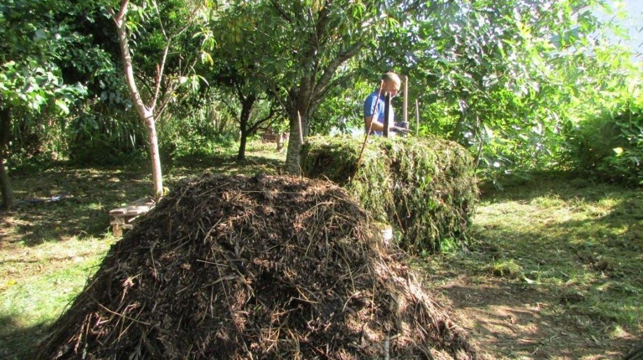Nas páxinas hai información sobre cuestións agrarias e sobre costumes e tradicións