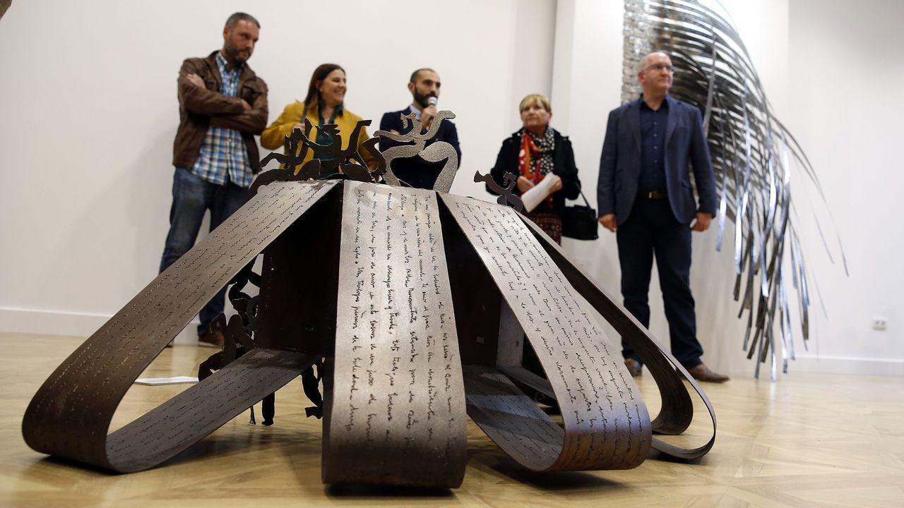 Una exposición de Soledad Penalta sirve de antesala a la Mostra de Curtas