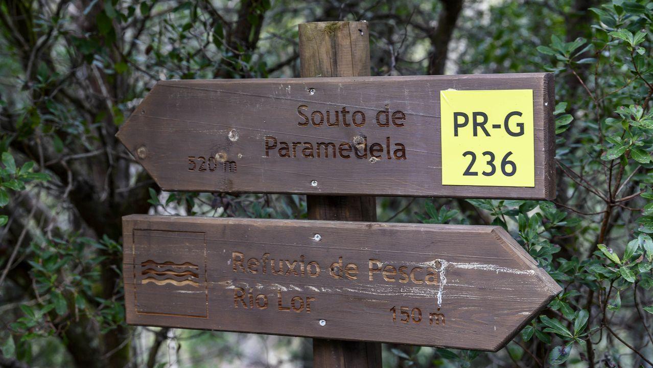 Letreros indicadores en la ruta