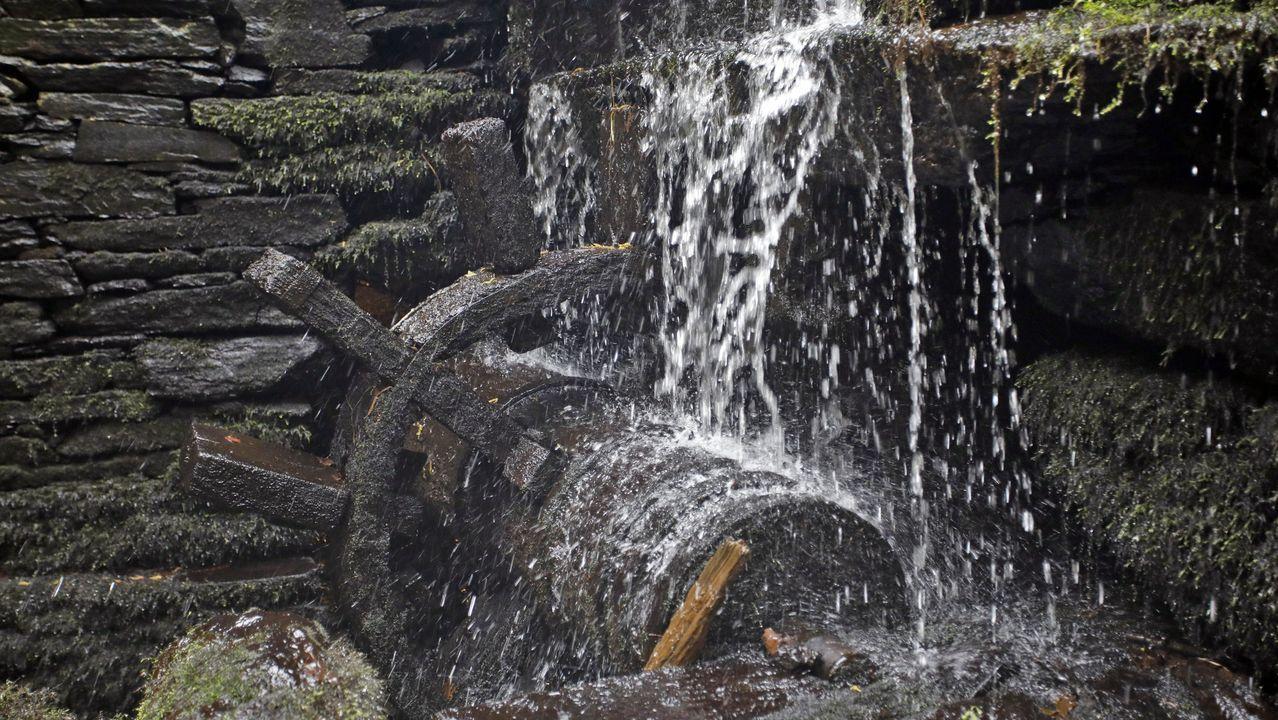 ÁLBUM: Los secretos que esconde el río Chamoso.Los enfrentamientos entre animalistas y cazadores se sucedieron hace semanas durante el Campeonato Galego de Caza do Raposo