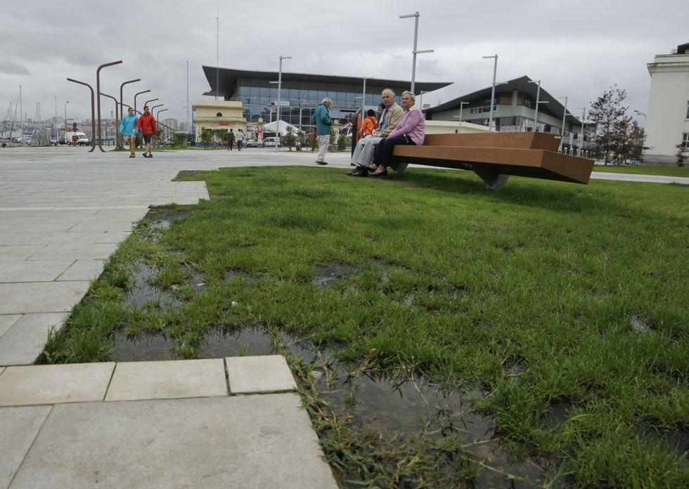 Las descargas de carbón y graneles en el puerto de A Coruña, un trastorno para los vecinos.<span lang= es-es >Crítica al Puerto</span>. El colectivo Arco Iris denunció que el Puerto está tapando los huecos de los árboles en la zona de Palexco.