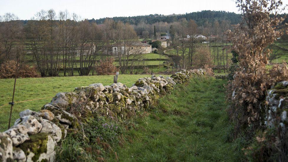 Un tramo del camino entre los pueblos de Noguedo y Paradela