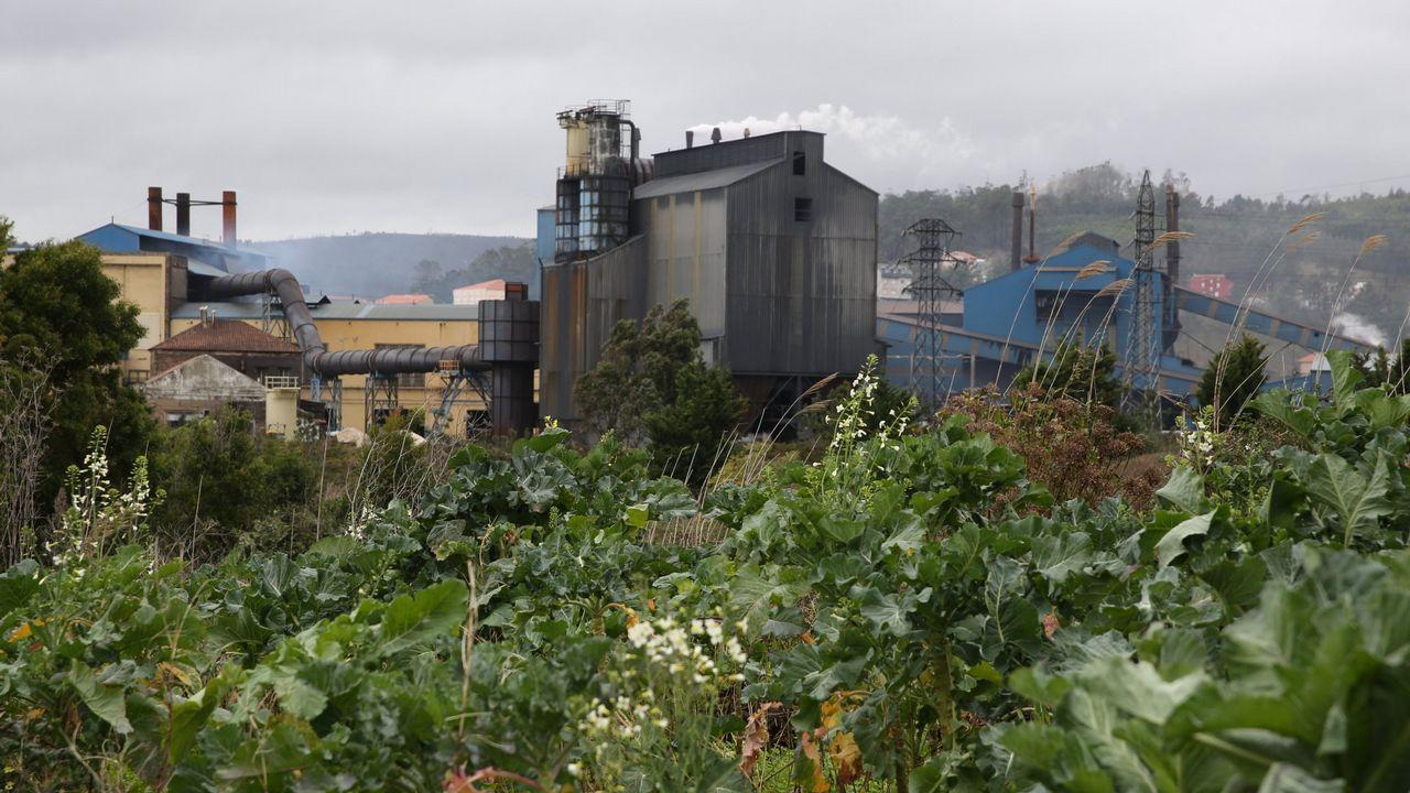 Las imágenes del 1 de mayo en A Coruña.Instalaciones de Ferroatlántica en Cee