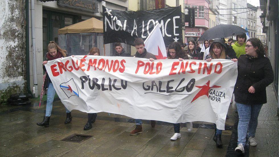 Los reyes visitan ARCO.La manifestación convocada por los estudiantes transcurrió ayer bajo la lluvia y recorrió parte del centro urbano de Pontevedra.