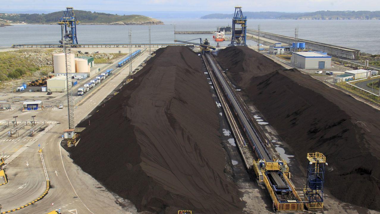 Terminal de carbón en el puerto exterior, en una imagen del pasado mes de junio