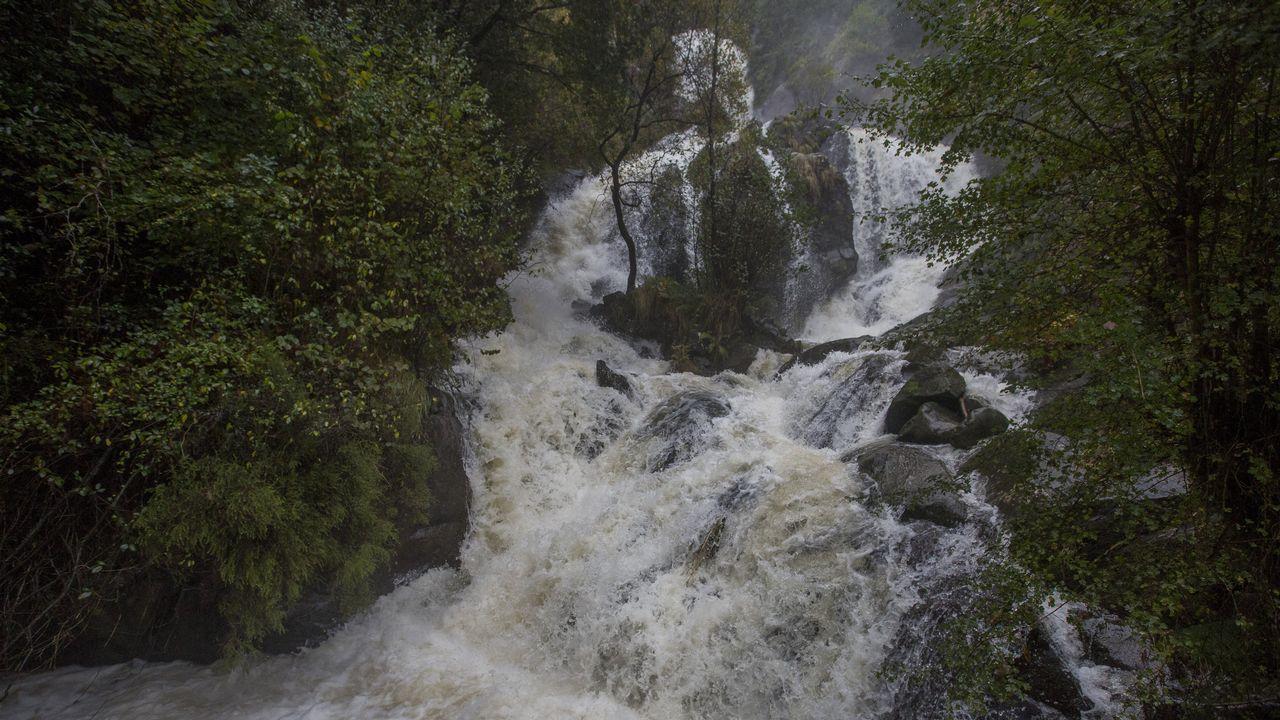 Férveda de Entrecruces, Carballo