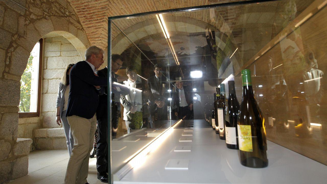 Nuevo museo del vino en Salvaterra