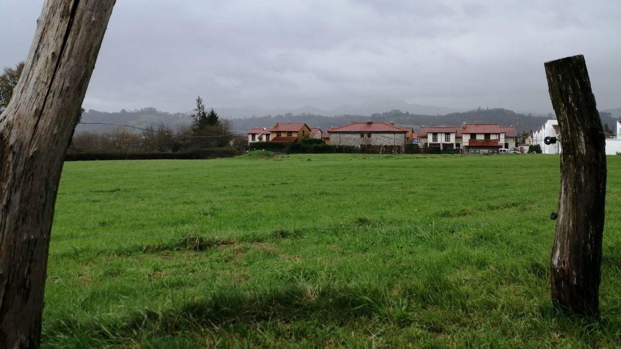 Terreno donde se edificarán las viviendas colaborativas