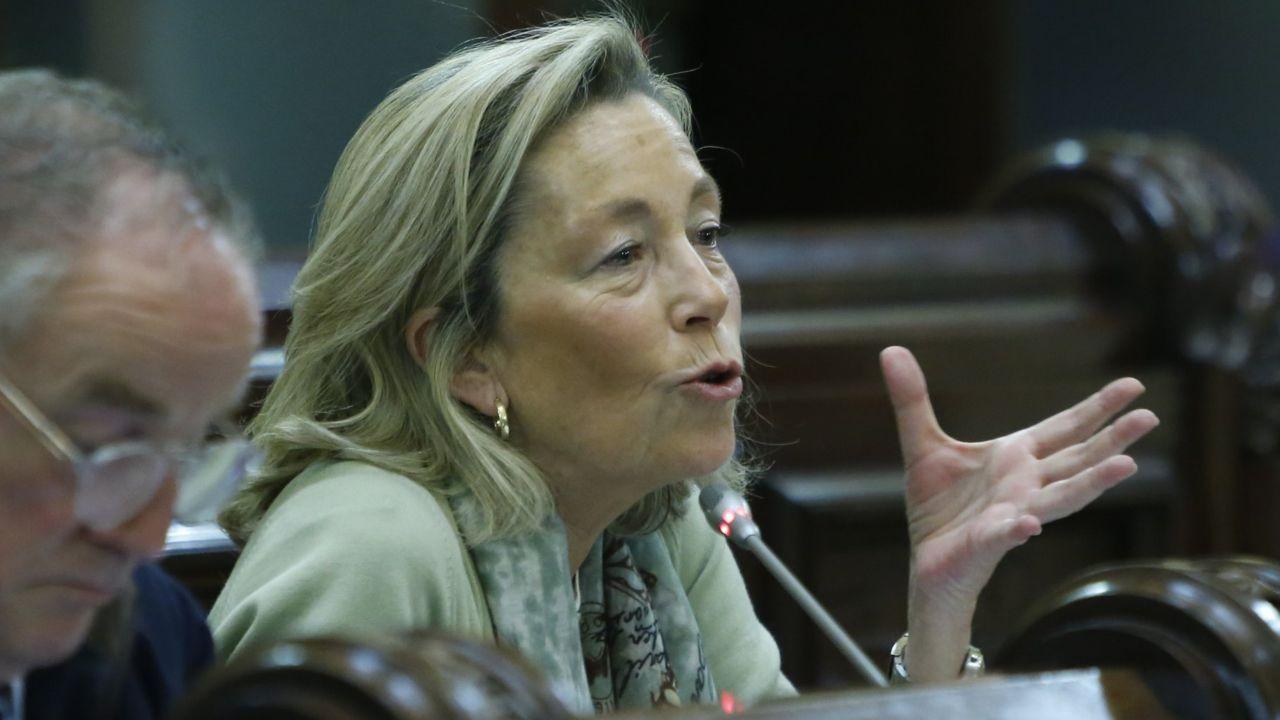 Rosa Gallego en un pleno municipal