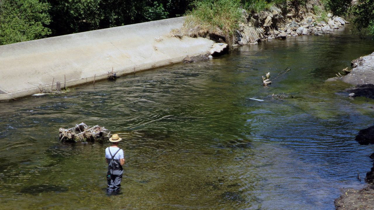 Cantas troitas polo río abaixo van?.En este centro de mayores situado en Cospeito viven ahora mismo 12 personas