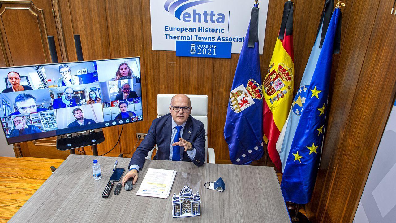 Baltar, en la reunión telemática de la EHTTA