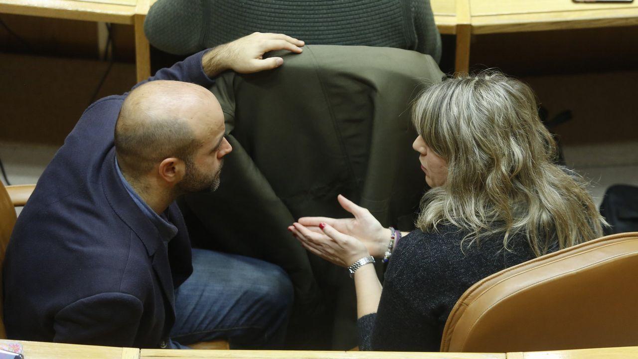 Constitucion del Consello das Mareas , En Marea.Luís Villares y Carmen Santos conversan en el Parlamento de Galicia