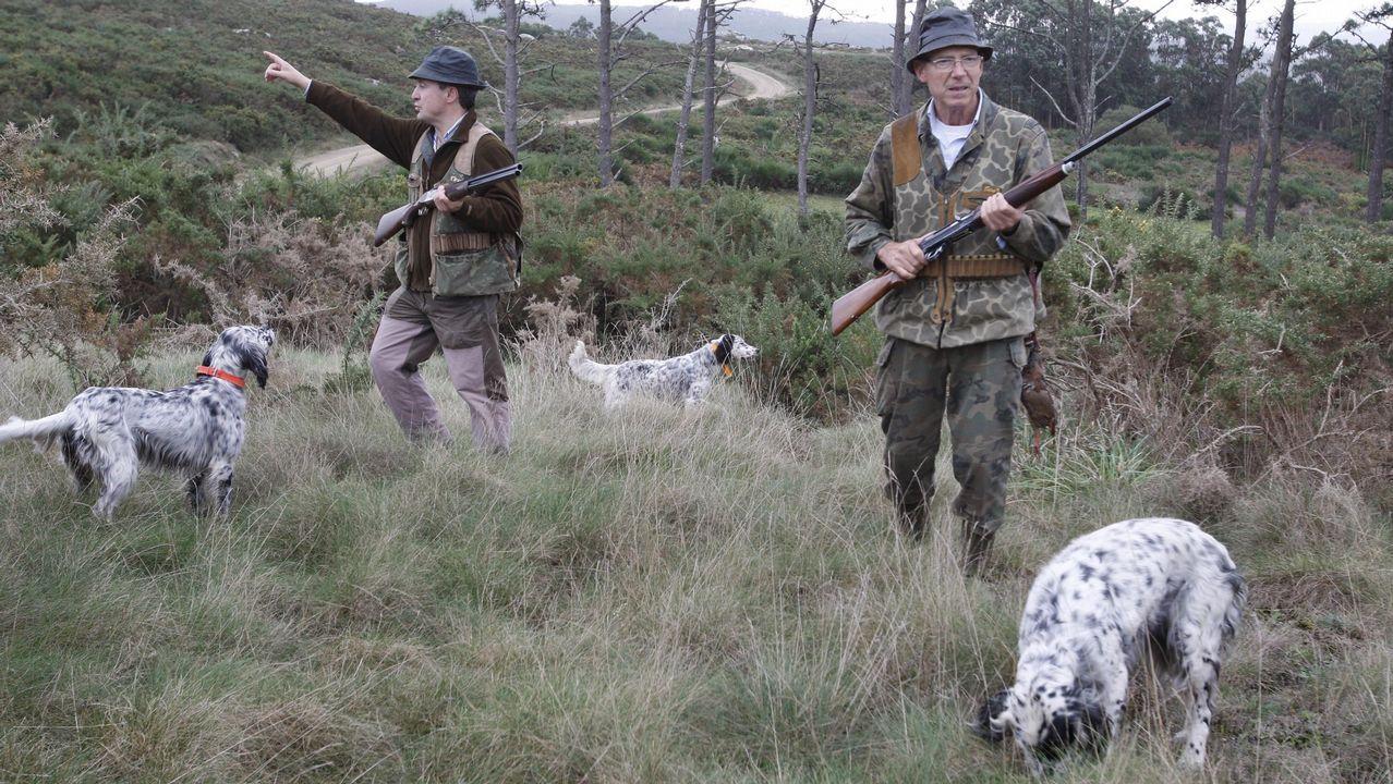 Pacma protesta contra la caza del zorro ante el Marco.Presentación de la candidatura de Pacma a las europeas, generales, autonómicas y municipales