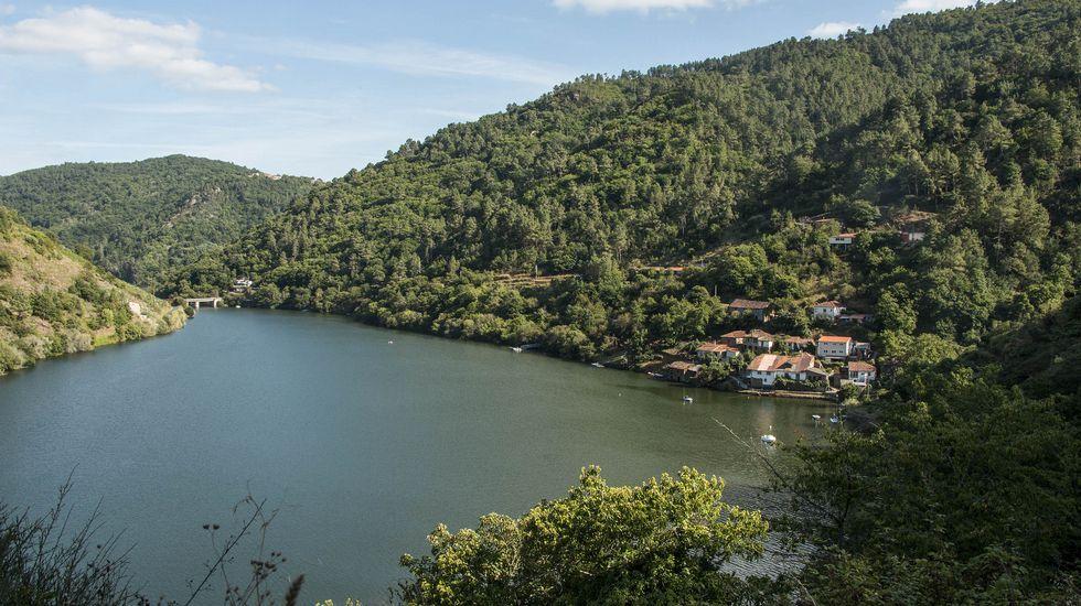 Una vista del pueblo de Pincelo a orillas del Miño, en la zona por donde discurre la primera parte de la ruta