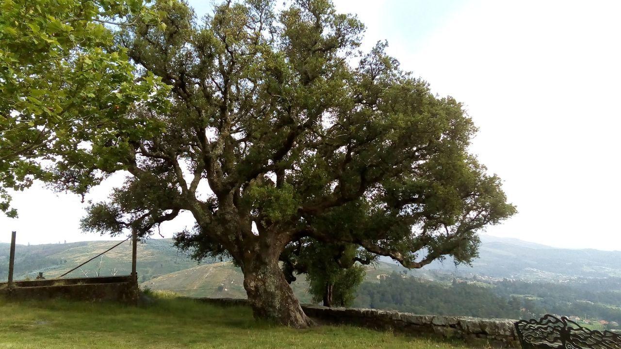 El espectacular paso delnegro al verde de los montes calcinados de Vigo.En el centro de la imagen, Antonia Arnoso Paz, «Toñita», recibiendo el título de Hija Predilecta de A Capela