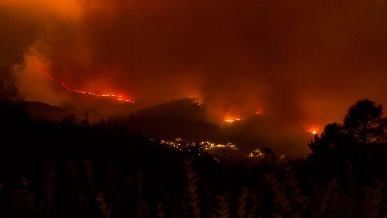 trabajador, trabajadores, construcción, empleados, guantes, martillo.Imagen de uno de los incendios que asoló Galicia en la ola otoñal de octubre del 2017