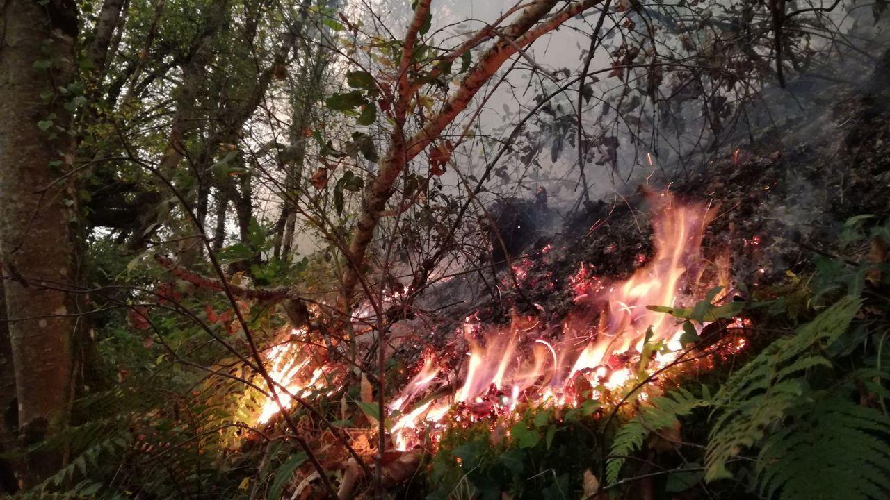 Incendio en Triacastela