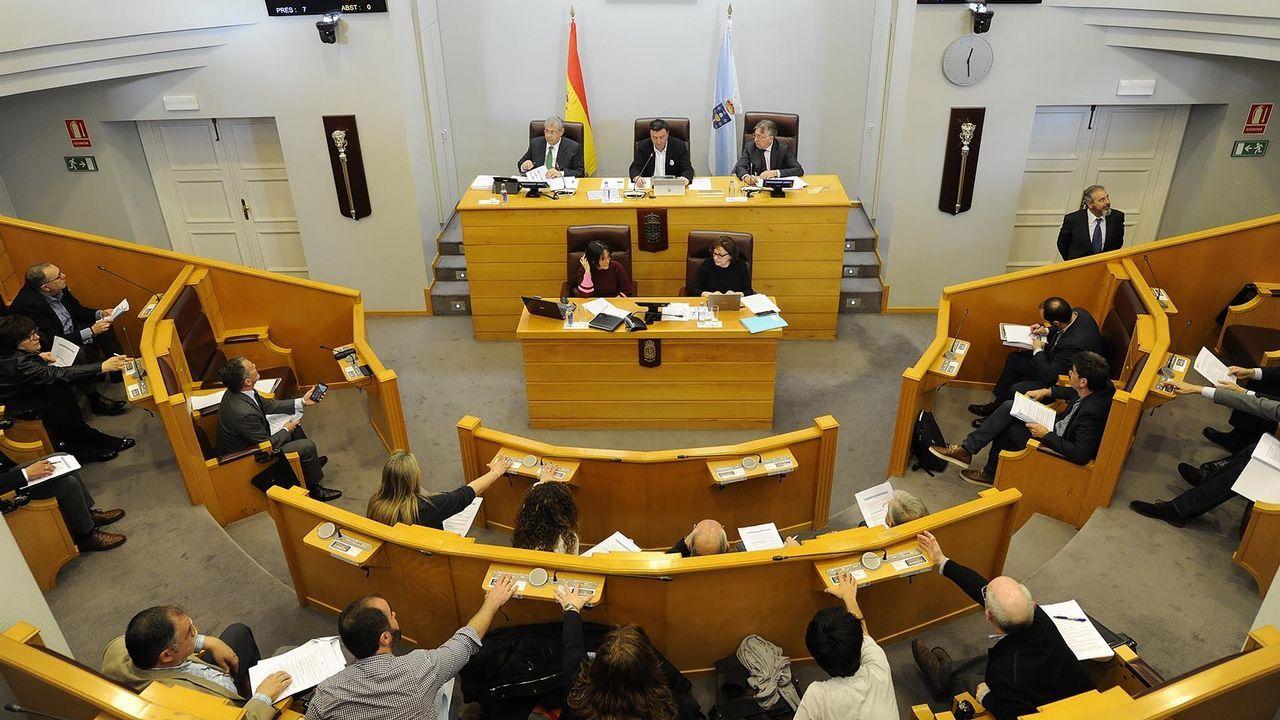 Vista general del pleno de la Diputación de A Coruña
