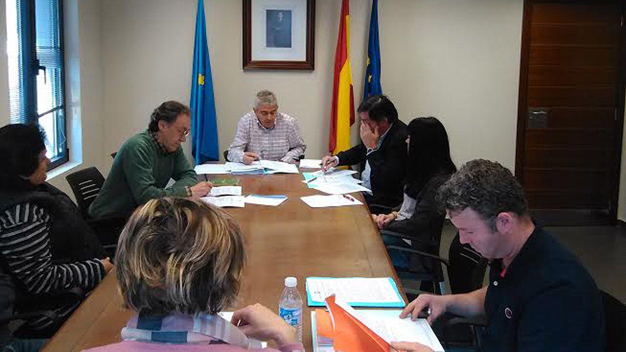 Una visión panorámica de la cultura asturiana de la sidra.Pleno de Somiedo