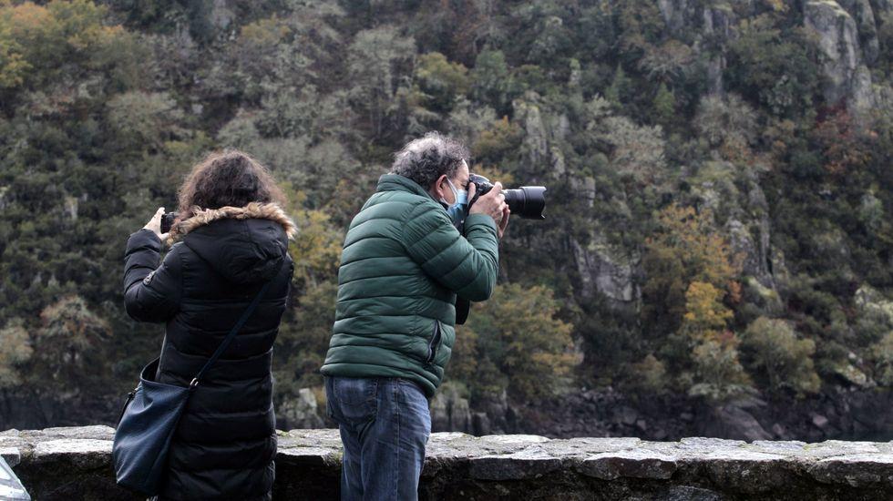 Las fotos del incendio de Marcelle, en Monforte.Las perspectivas de ocupación turística son altas en la Ribeira Sacra
