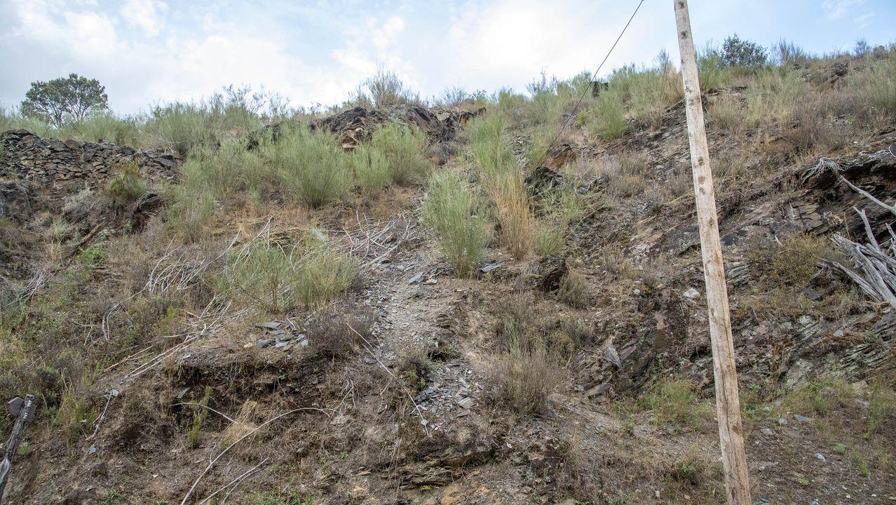 Por este terreno en pendiente discurría la línea férrea por la que pasaban las vagonetas cargadas de mineral de hierro