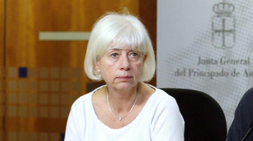La diputada de IU en la Junta General, Concha Masa