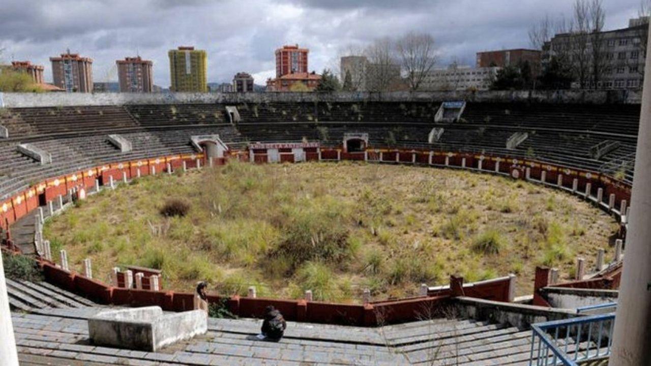 La protectora de Vilagarcía recibe 20 cachorros abandonados en una semana.Plaza de toros de Oviedo