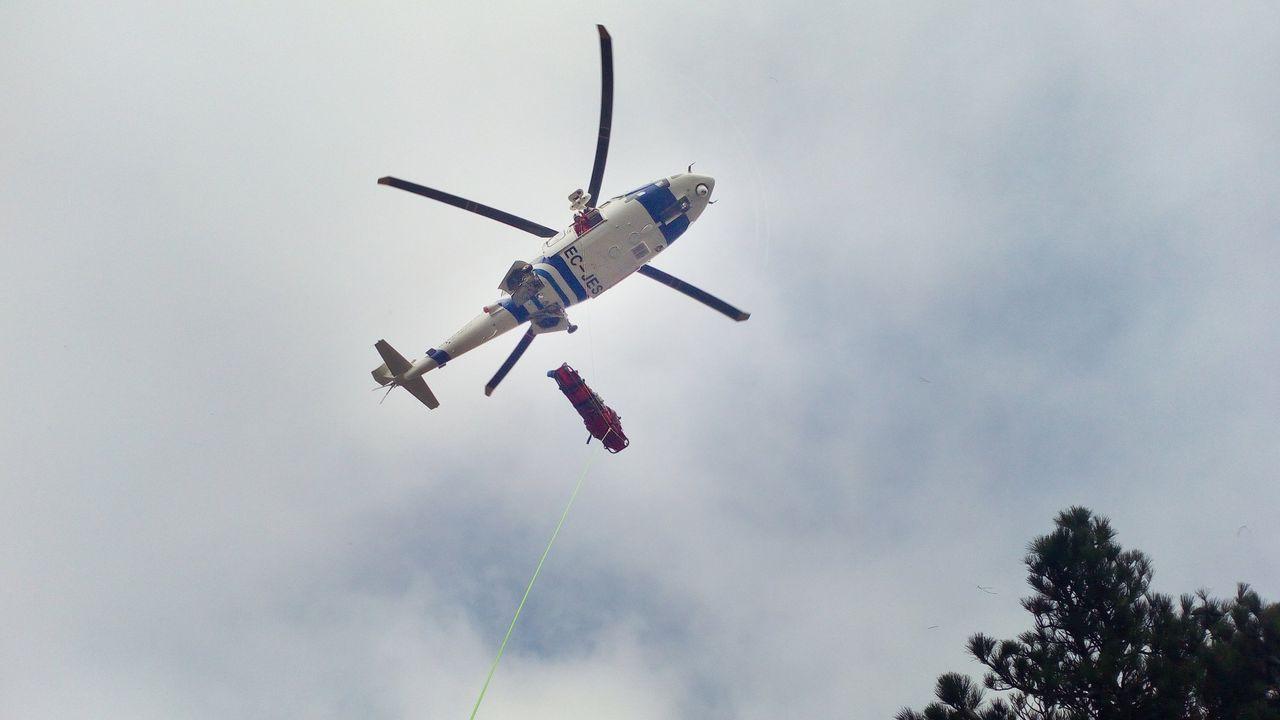 Más de una veintena de animales muertos en dos fincas en Llanes.El accidente se produjo en la N-634 a su paso por Barreiros pasadas las ocho de la tarde