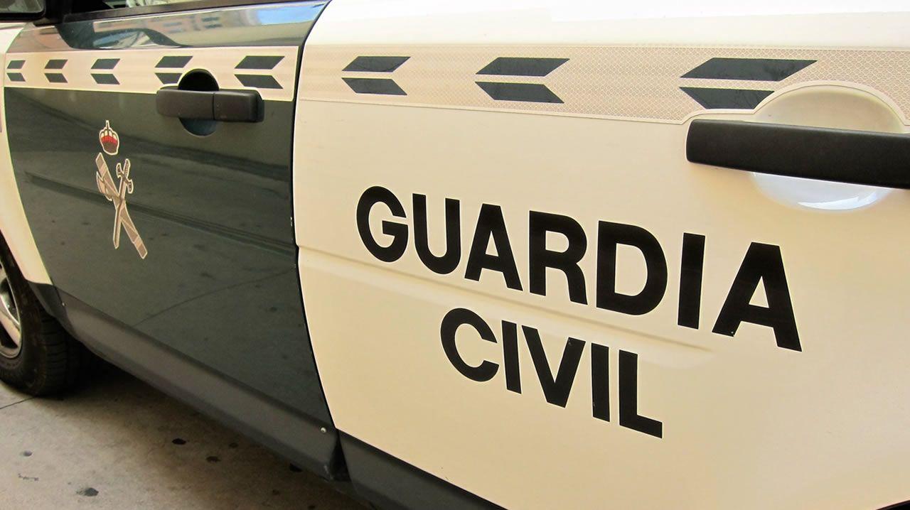 Detenido tras darse a la fuga y empotrar contra dos patrullas de l guardia Civil en Verin .En la imagen, el jabalí que fue embestido por un vehículo en el polígono Río do Pozo