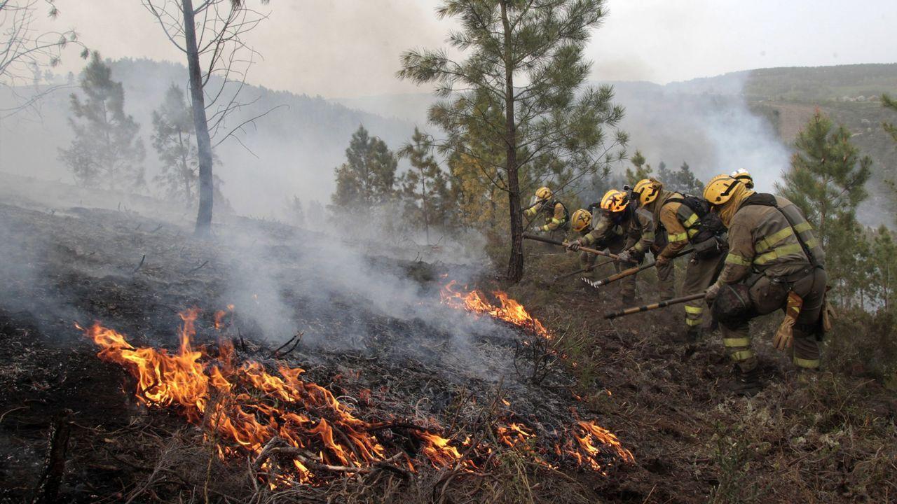Imagen de archivo de labores de extinción de un incendio forestal