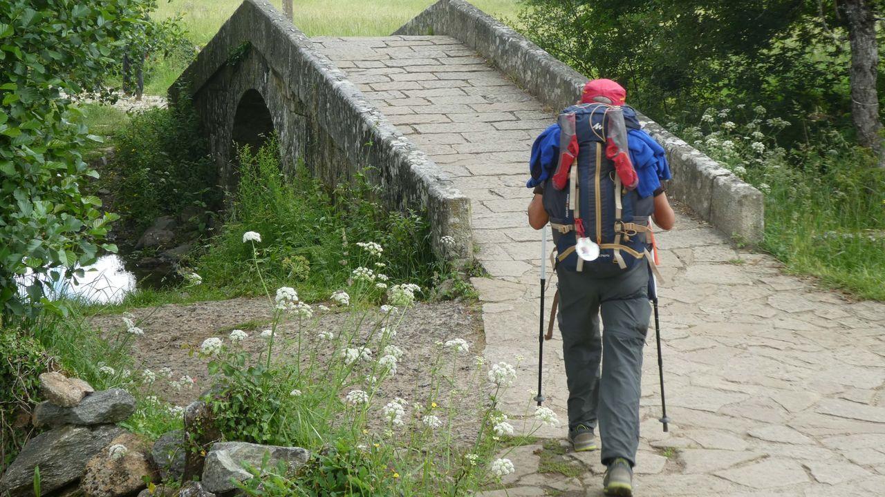 Un peregrino recorre una etapa del Camino de Santiago
