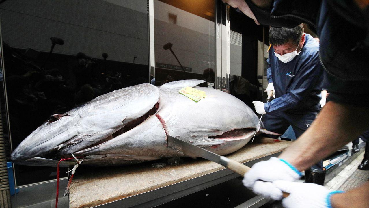 Yukitaka Yamaguchi, presidente de la empresa que compró el atún rojo, participó en el troceado de un pescado que pesó 208 kilos