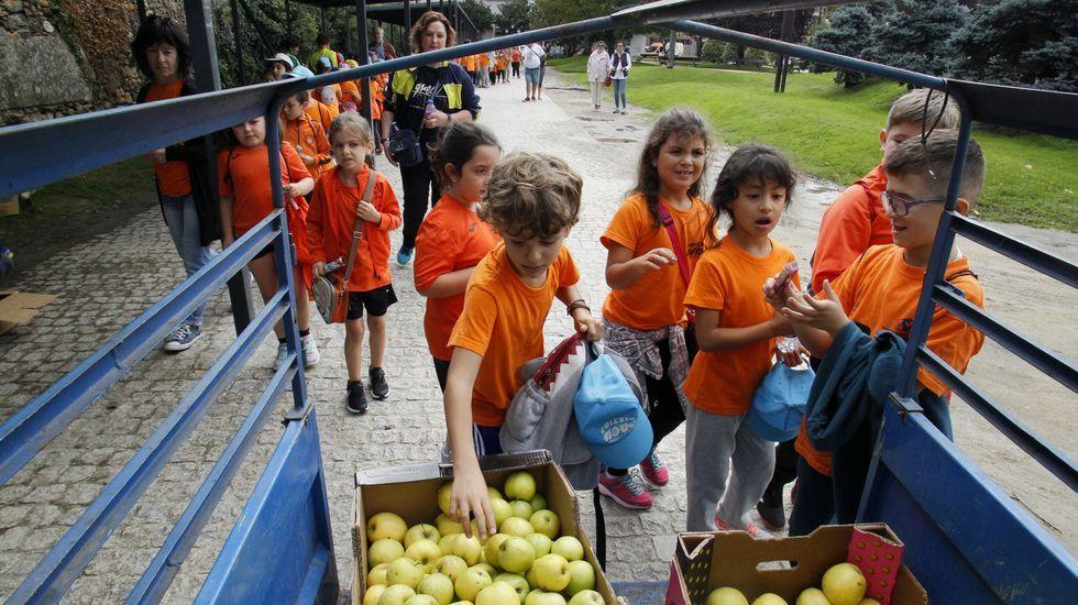 La organización tenía manzanas en el Parque dos Condes para que los escolares repusiesen fuerzas