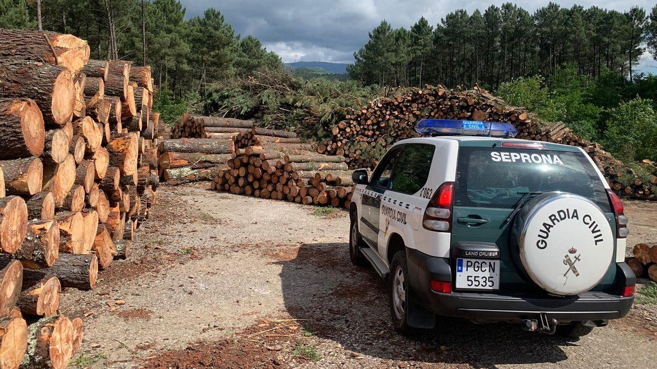 La administración creó una zona demarcada de contención de la bacteria en la frontera con Portugal, foco del origen de la infección.