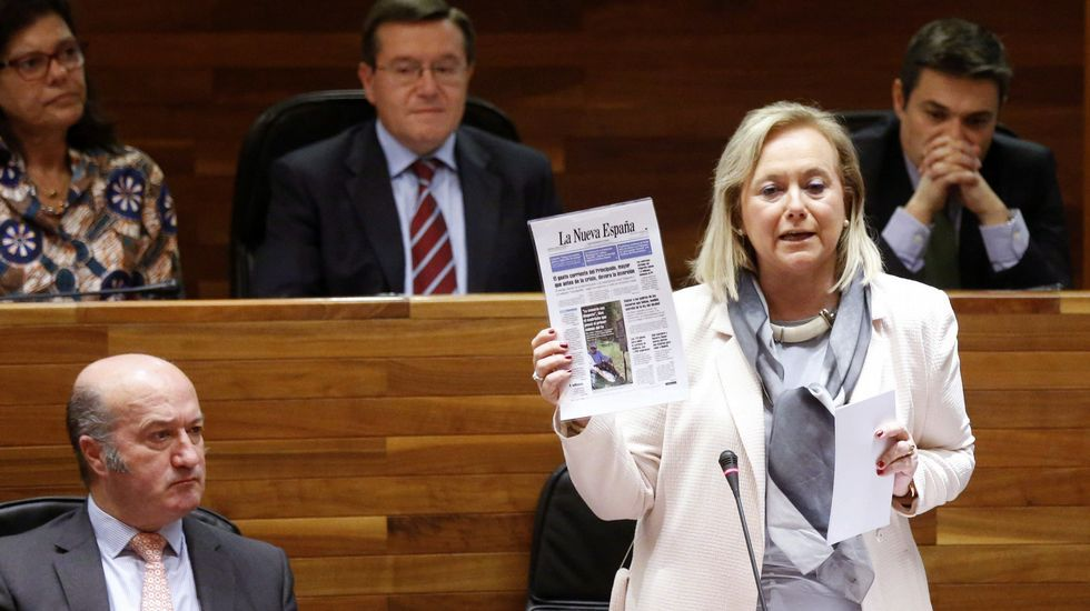 La presidenta del PP, Mercedes Fernández, durante su intervención en el pleno de la Junta General del Principado