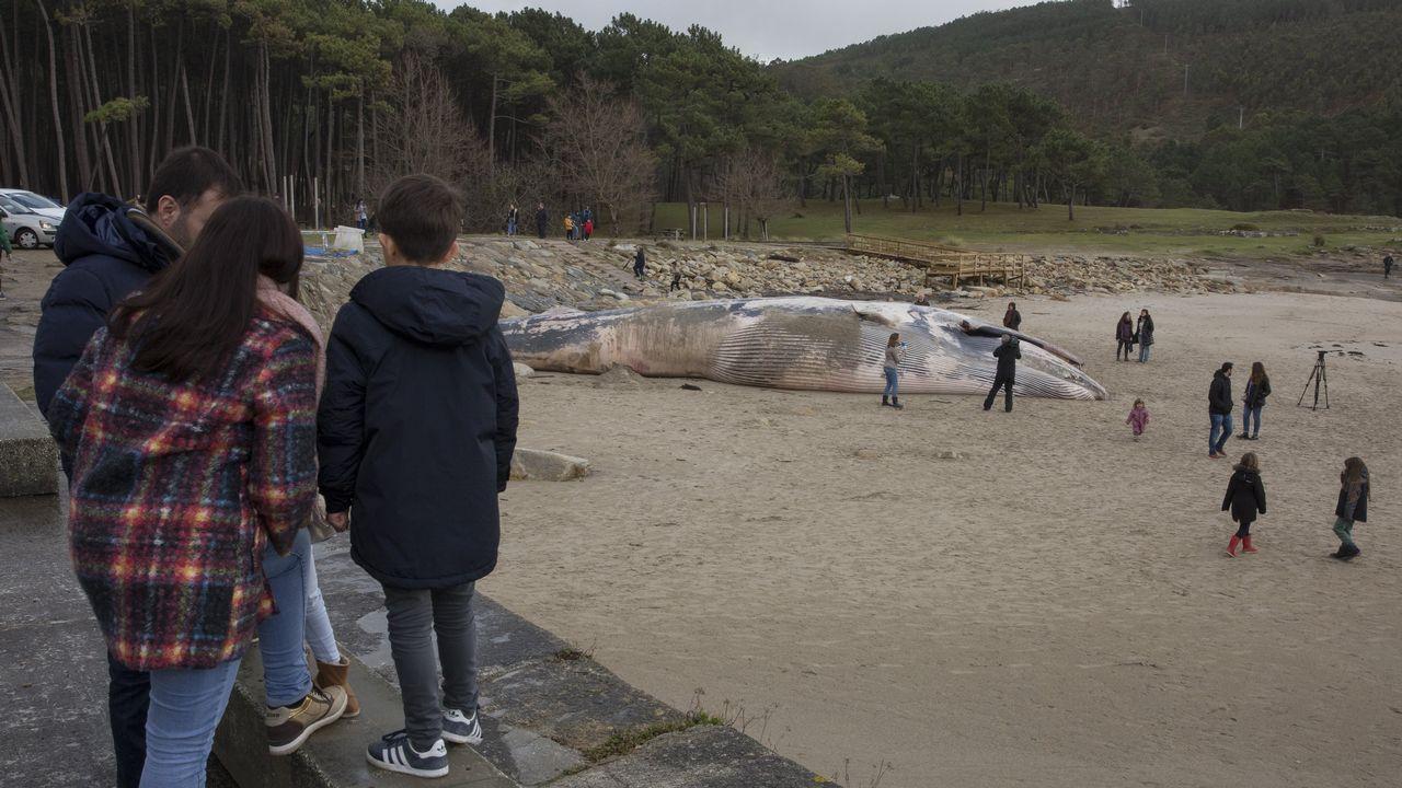 Ballenas.Familias enteras llegadas desde toda la comarca, de A Coruña e incluso desde Santiago no dejaron pasar la oportunidad de contemplar una ballena de estas características