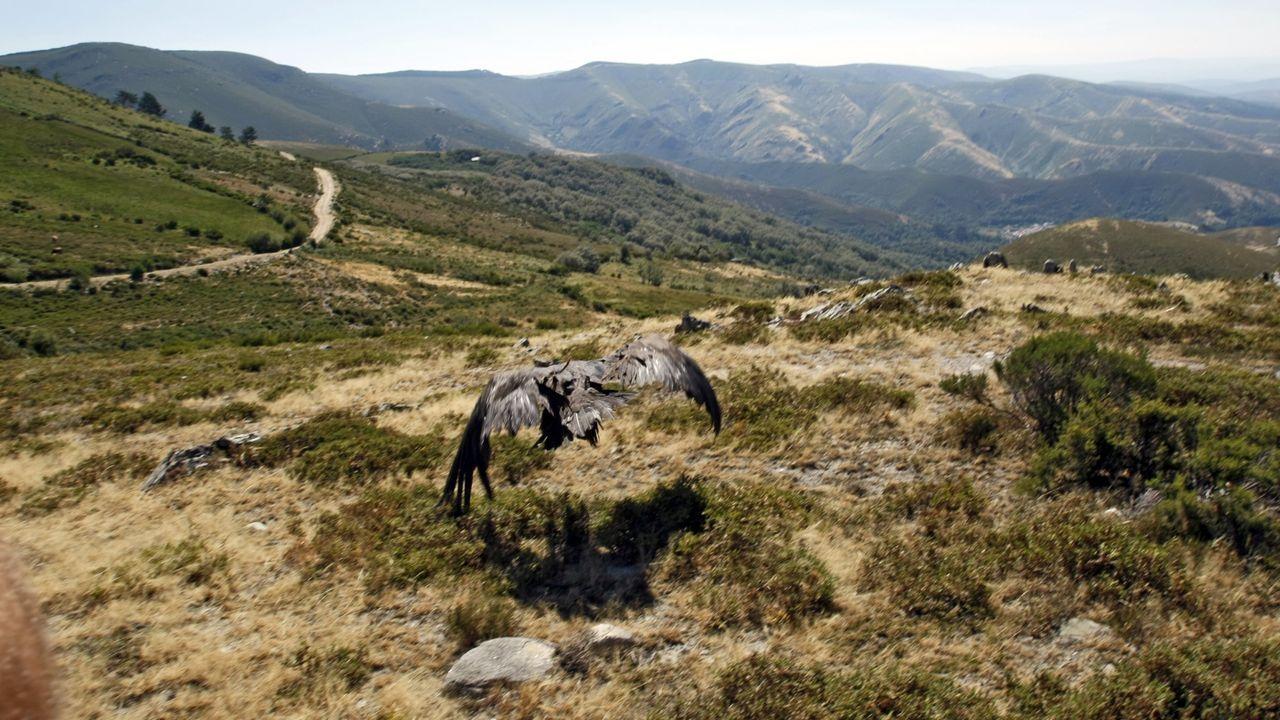 Imagen de archivo de la Serra de San Mamede