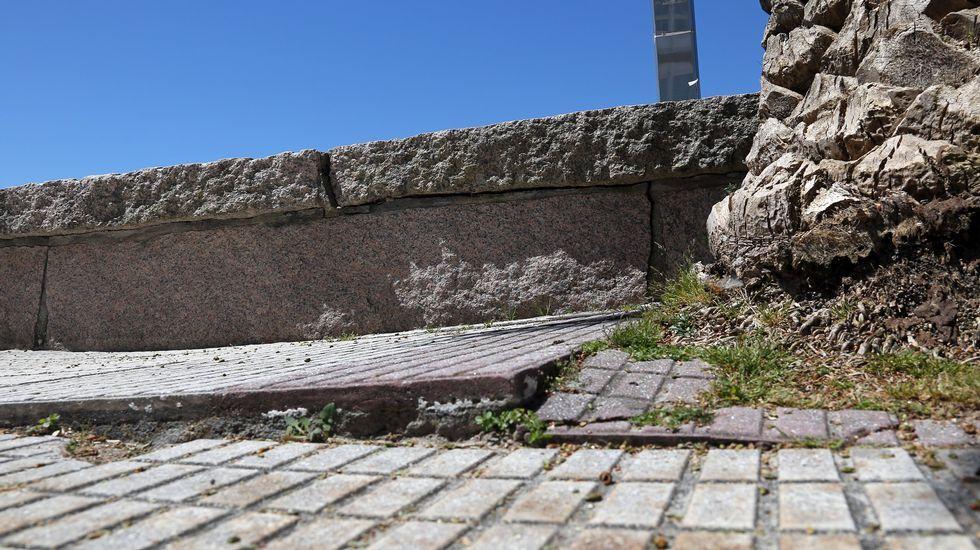 Trail Galaica Seis Cumes, en el monte de a Curota